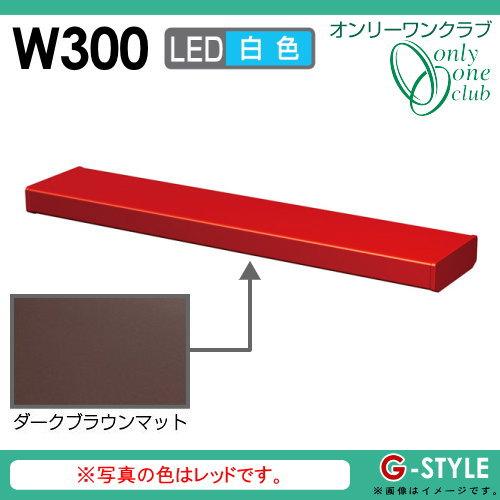 オンリーワンエクステリア 照明 ポーチライト 【シンライト プレーンタイプ W300 白色 ダークブラウンマット(DM)】 Thin Light