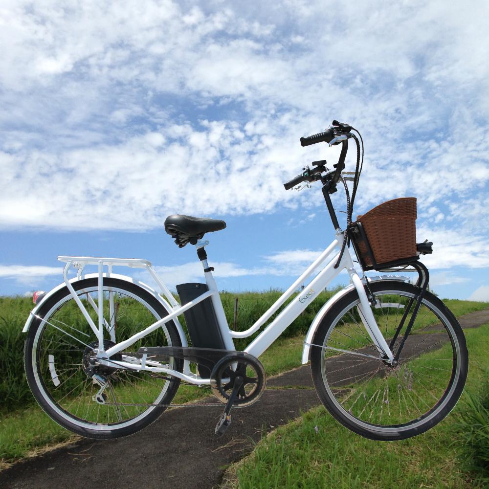 【漕ぐのが楽で爽快感ある走り】フル電動アシスト自転車 Exect familiar EX26BS(26インチ)