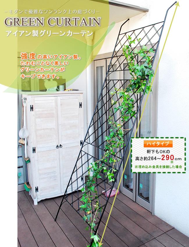 アイアン製グリーンカーテン【住まいスタイル】