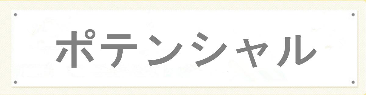 ポテンシャル:厳選したメンズアパレル・小物販売のサービスを提供します!
