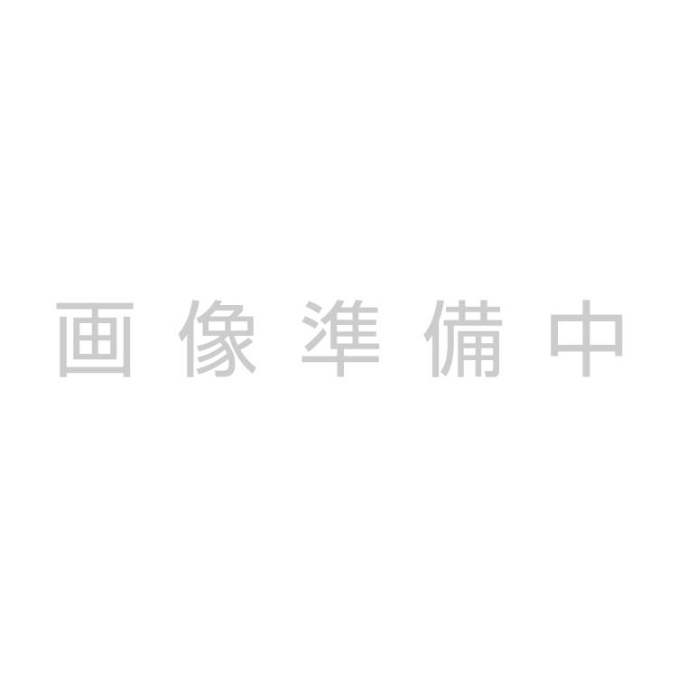 サングラスサルバトーレフェラガモ SF839SA 53サイズ ウェリントン レディース 女性用 Salvatore Ferragamo UVカット 紫外線カット 国内正規品 送料無料