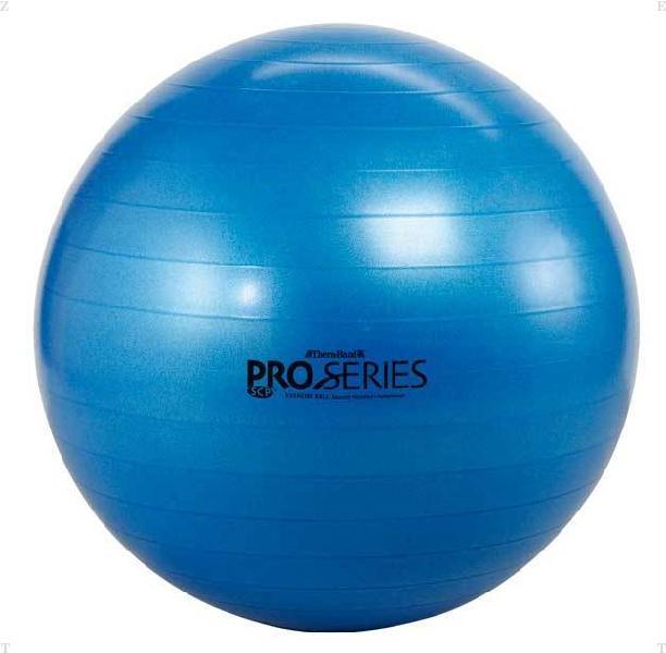 安心と信頼 DM SDSエクササイズボール 最大直径 cm 75 完全送料無料