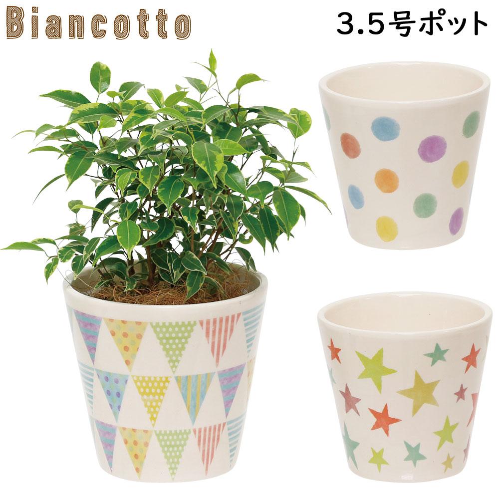 陶器製の可愛いプランター 特価キャンペーン 3.5号ポット 3.5号鉢 プランター 陶器製 ビアンコット #3.5 ドット フラッグ 未使用 底穴あり あす楽対応 全3柄 お花 鉢植え ガーデニング スター 観葉植物