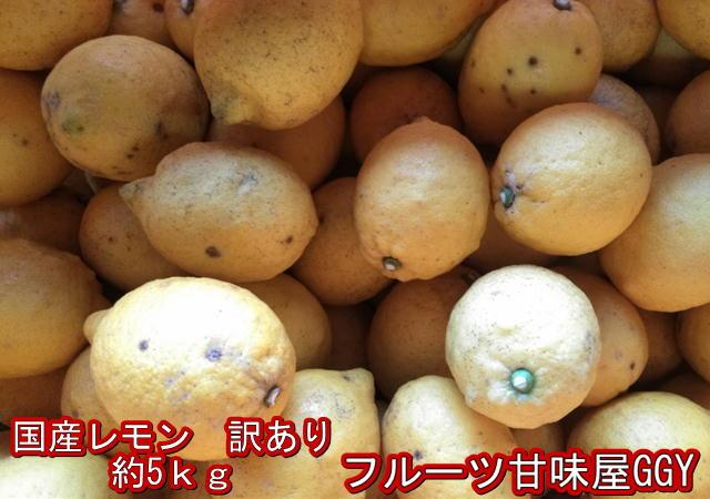 安心、安全! Y/P国産レモン 訳あり 約5kg 熊本産 リスボン マイヤー グランドレモン 80サイズ
