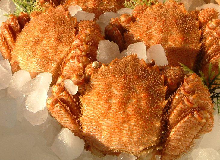 【ふるさと納税】冷凍ボイル毛がに 3尾セット(約500g×3尾)