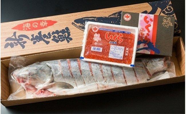 【ふるさと納税】オホーツク秋鮭切身姿造りと魚卵セット
