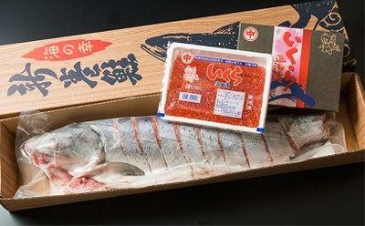 【ふるさと納税】オホーツク海の秋鮭親子セット