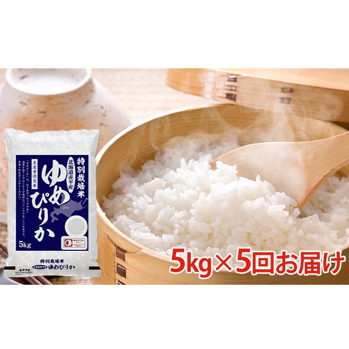 【ふるさと納税】北海道赤平産ゆめぴりか特別栽培米5kg×5回お届け 【定期便・米・ゆめぴりか】