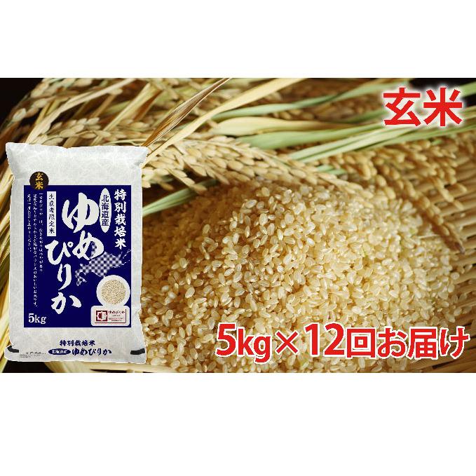 【ふるさと納税】玄米 北海道赤平産ゆめぴりか特別栽培米5kg×12回お届け 【定期便・玄米・お米・ゆめぴりか】