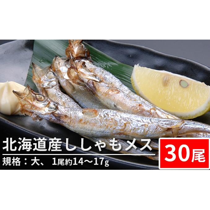 希少 北海道赤平市 ふるさと納税 北海道産ししゃもメス 30尾 業界No.1 規格:大 シシャモ 魚貝類 ししゃも ※1尾約14~17g