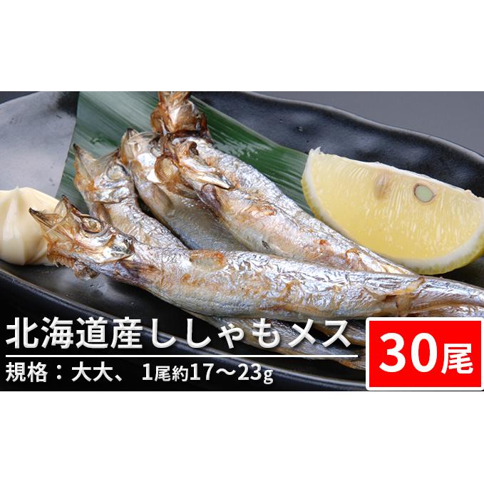 正規取扱店 北海道赤平市 ふるさと納税 専門店 北海道産ししゃもメス 30尾 ※1尾約17~23g 魚貝類 ししゃも 規格:大大