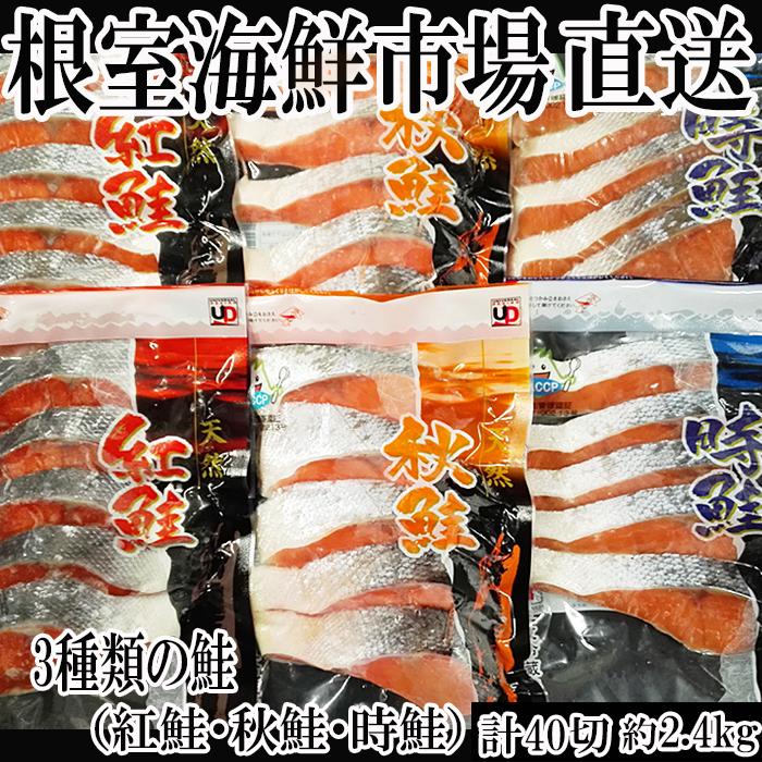 北海道根室市 【ふるさと納税】<5月31日まで計40切、約2.4kg...