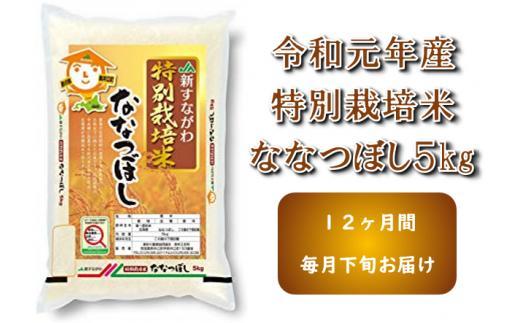 【ふるさと納税】JA新すながわ産 特栽米ななつぼし定期便(12ヶ月)