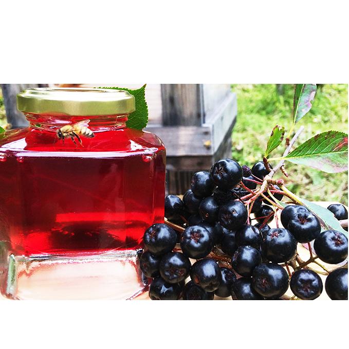 【ふるさと納税】北海道伊達大滝産アロニアベリーの【赤いはちみつ】 【加工食品・ハチミツ】