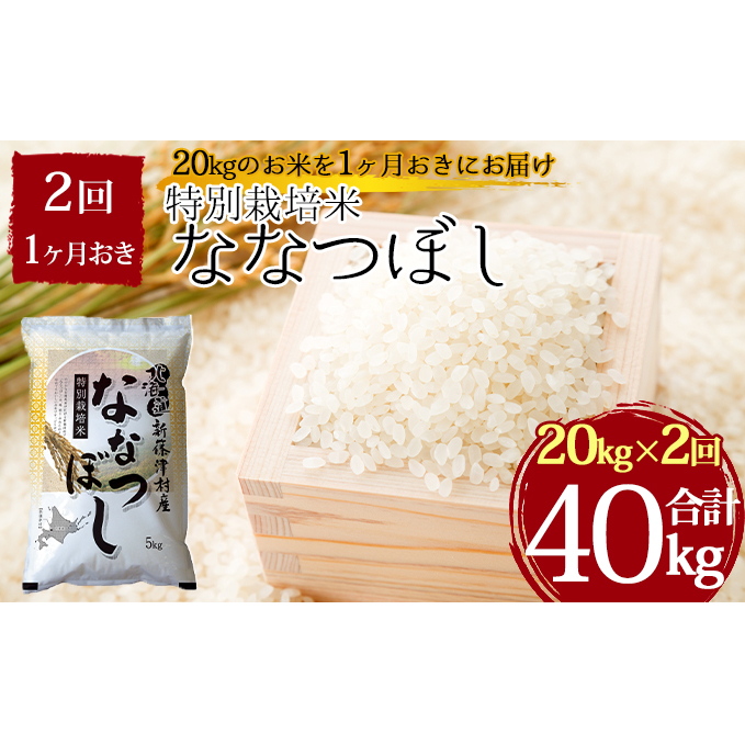 北海道新篠津村 通販 ふるさと納税 特別栽培米ななつぼし計40kg 20kg×1ヶ月おきに2回発送 定期便 ななつぼし 米 出荷 お米