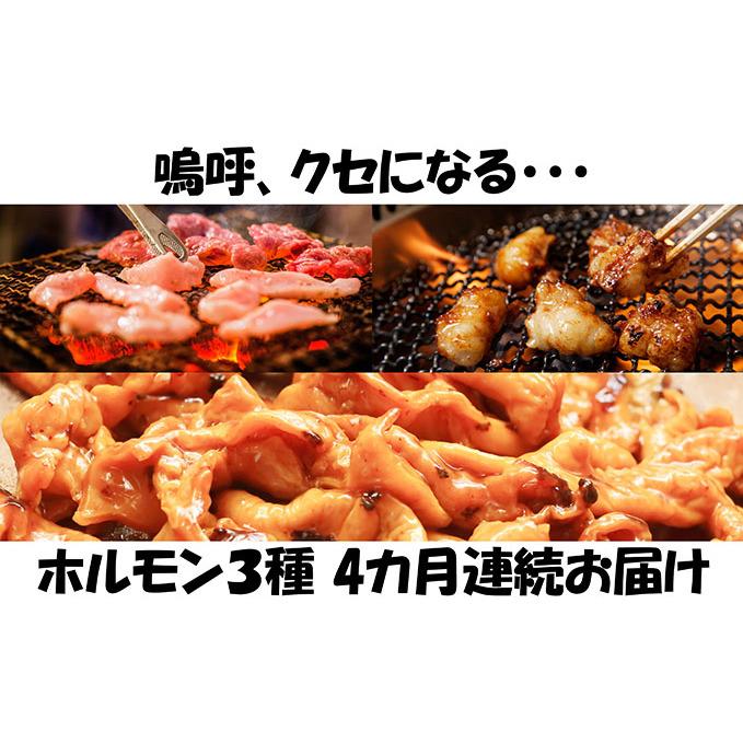 【ふるさと納税】【4カ月連続】内臓天国 ~3種のホルモンセット~ 【定期便・豚肉/ホルモン・お肉・牛肉・焼肉・バーベキュー】