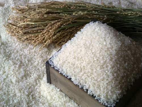 【ふるさと納税】豊作米(R) ゆめぴりか5kg×6か月