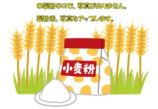 【ふるさと納税】岩崎農園 小麦粉ギフトB