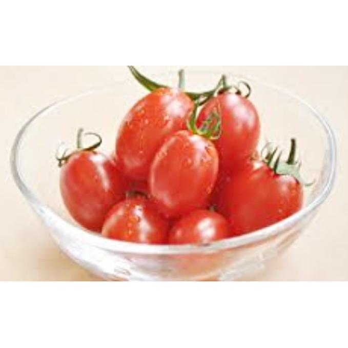 【ふるさと納税】北海道月形町産ミニトマト アイコ 約3kg 1箱 【野菜・トマト】 お届け:2020年7月下旬~8月末頃まで