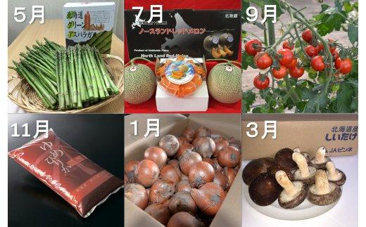 【ふるさと納税】農産物年間定期便(全6回)