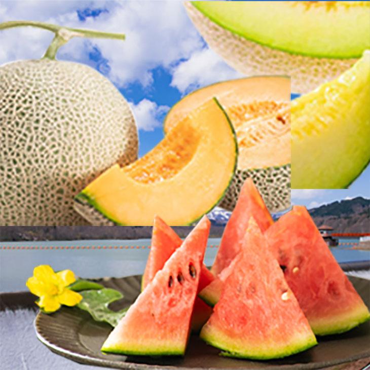 [G03]雨竜町季節の果物定期便(3ヶ月)