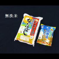 【ふるさと納税】 1004 無洗米ななつぼし7kg