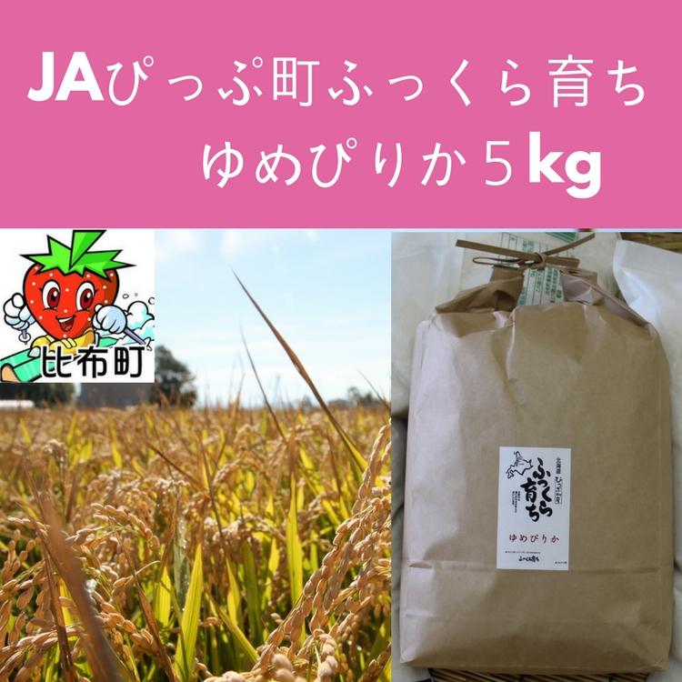 【ふるさと納税】JAぴっぷ町 ゆめぴりか 精米5kg 2019年産米