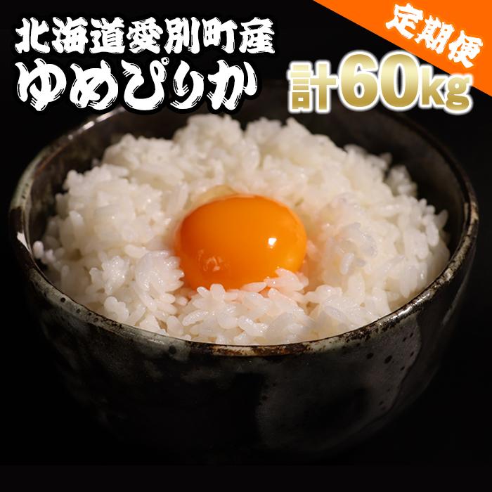 【ふるさと納税】愛別町産米(ゆめぴりか5kg×2袋)6ヶ月定期配送【A17305】