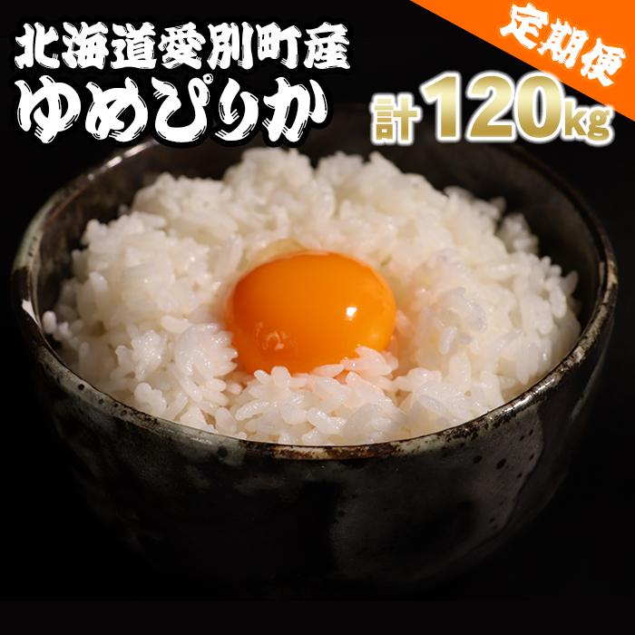 【ふるさと納税】愛別町産米(ゆめぴりか5kg×2袋)12ヶ月定期配送【A18306】