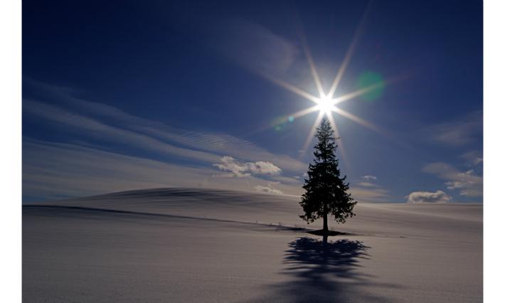 【ふるさと納税】[100-35]写真家 阿部俊一 額付き写真「冬景色の光」