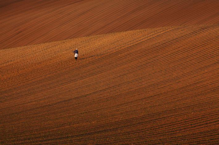 【ふるさと納税】[072-03]写真家 中西敏貴 額付き写真「開拓の地」(サイン入り)