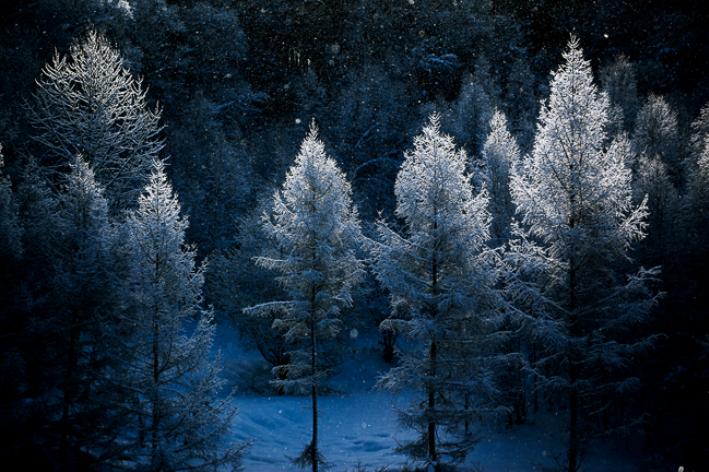 【ふるさと納税】[072-04]写真家 中西敏貴 額付き写真「厳冬の美」(サイン入り)