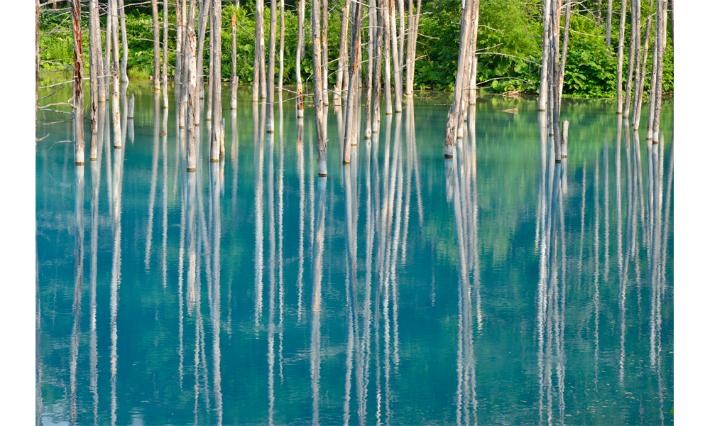【ふるさと納税】[100-34] 写真家 阿部俊一 額付き写真「青のゆらぎ」