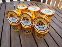 【ふるさと納税】ミッシュハウスの手作りペポナッツアイスクリーム(10個入り)