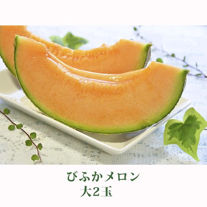 【ふるさと納税】北海道 美深町産 びふかメロン 大2玉 【果物類・フルーツ・メロン赤肉】 お届け:2020年7月上旬~2020年8月下旬