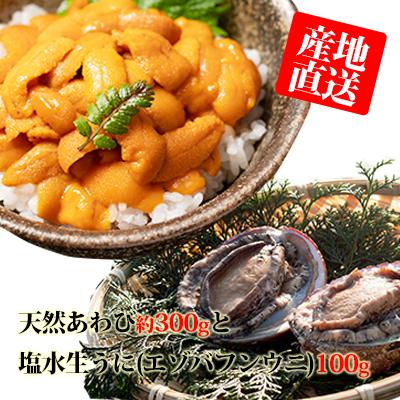 【ふるさと納税】北海道 天然あわび約300gと塩水生うに(エゾバフンウニ)100g 【魚介類・あわび・アワビ・鮑・魚貝類・ウニ・雲丹】 お届け:2020年6月中旬~8月15日まで