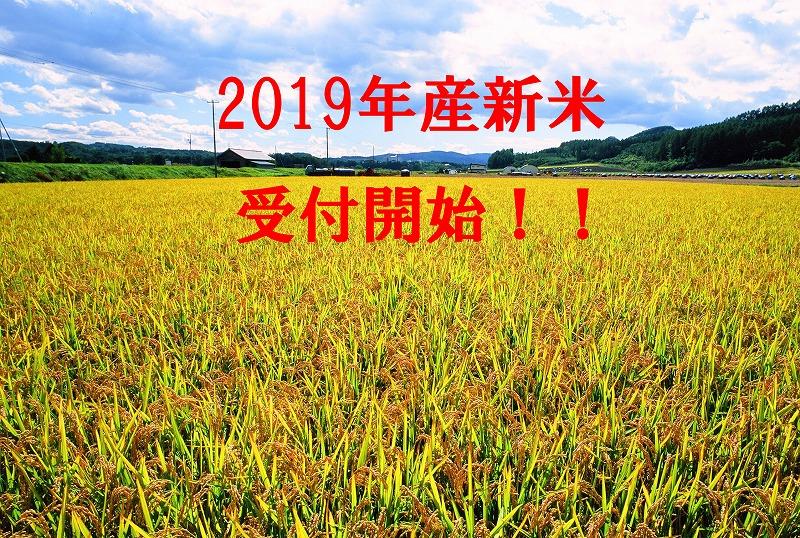 【ふるさと納税】新米 今井農場 あっぱれ米20kg(精米)