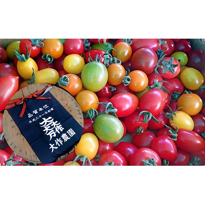 【ふるさと納税】<2020年7月中旬よりお届け>北海道壮瞥産 大作農園のカラフルミニトマト約1kgとオリジナル前掛け 【野菜・ミニトマト・野菜・トマト・ファッション小物】 お届け:2020年7月15日~9月下旬頃まで