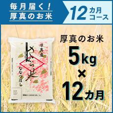 1年間で60kg 【ふるさと納税】毎月届く定期便「厚真のお米」5kg