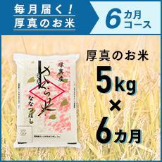 【ふるさと納税】6ヵ月!毎月届く定期便「厚真のお米」5kg