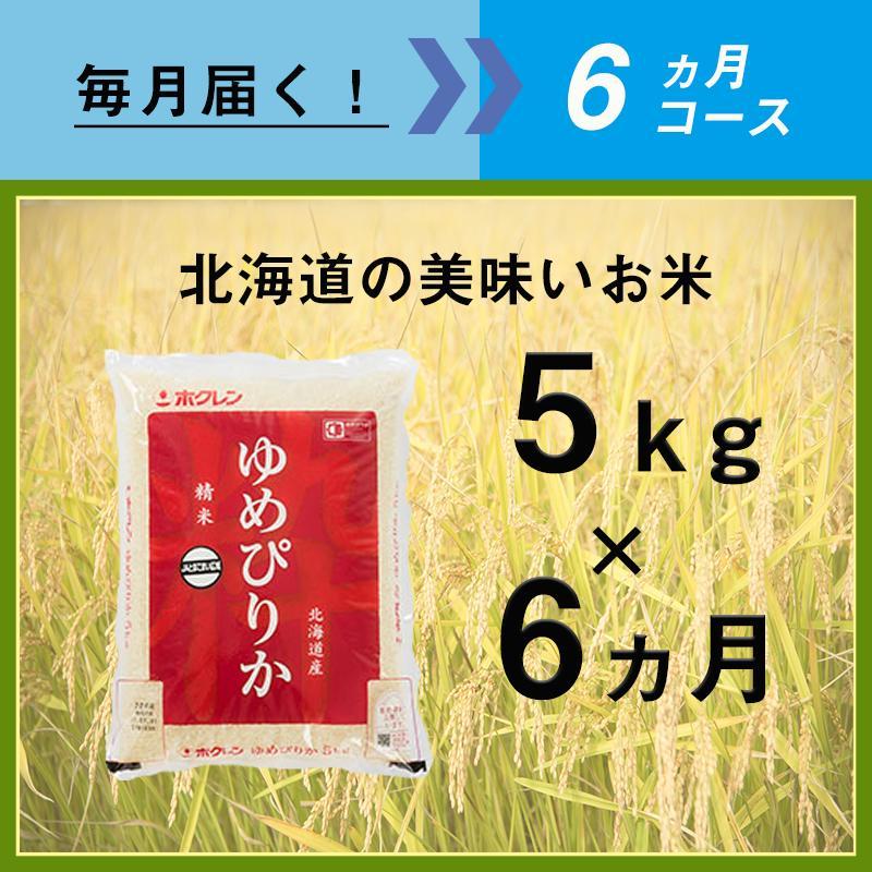 【ふるさと納税】6ヵ月定期便!最高のお米「ゆめぴりか」毎月5kgコース