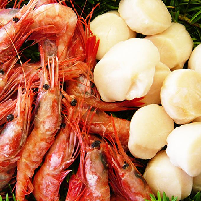 【ふるさと納税】北海道産帆立貝柱と大ぶり甘海老 【魚貝類/海鮮セット】