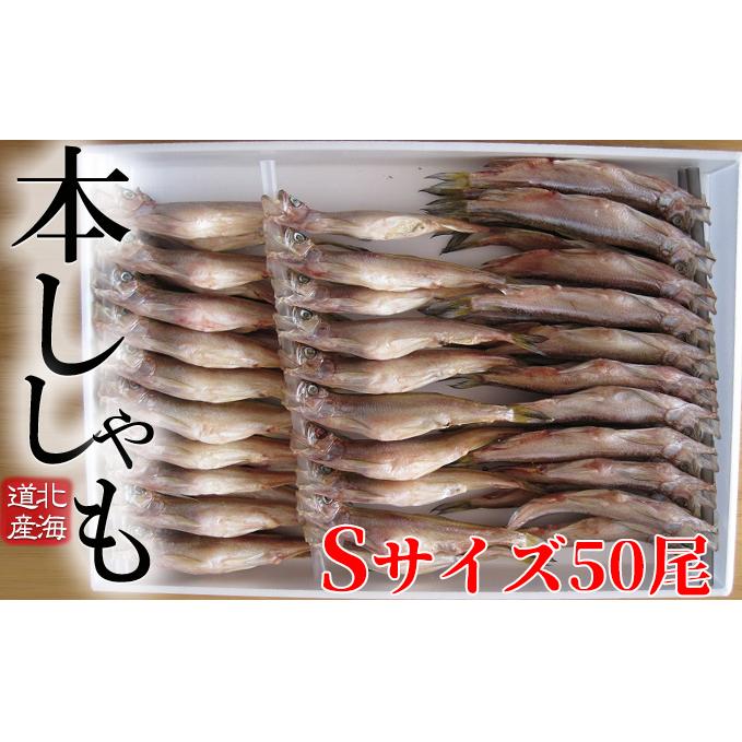 北海道日高町 ふるさと納税 北海道産ししゃもS50尾セット 魚貝類 干物 安値 シシャモ ししゃも 魚介類 正規店