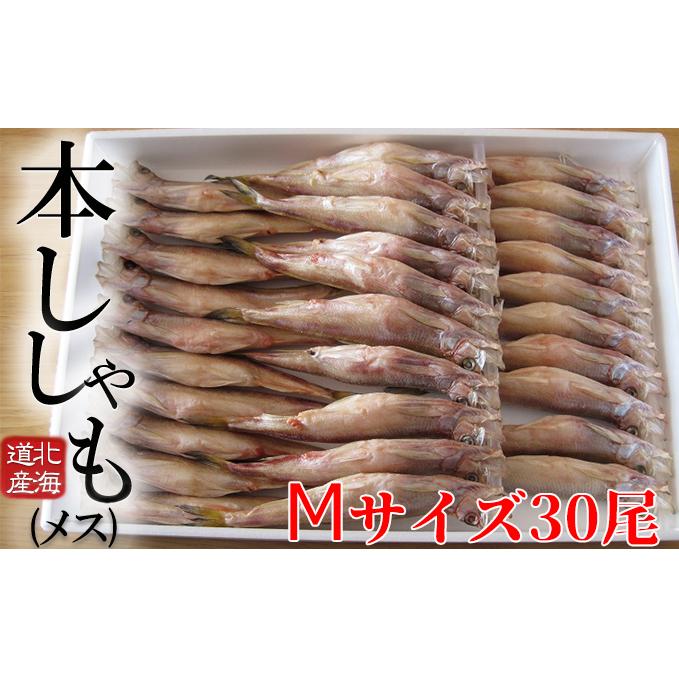 北海道日高町 通常便なら送料無料 ふるさと納税 北海道産ししゃも メス 格安 M30尾セット シシャモ 魚介類 魚貝類 干物 ししゃも