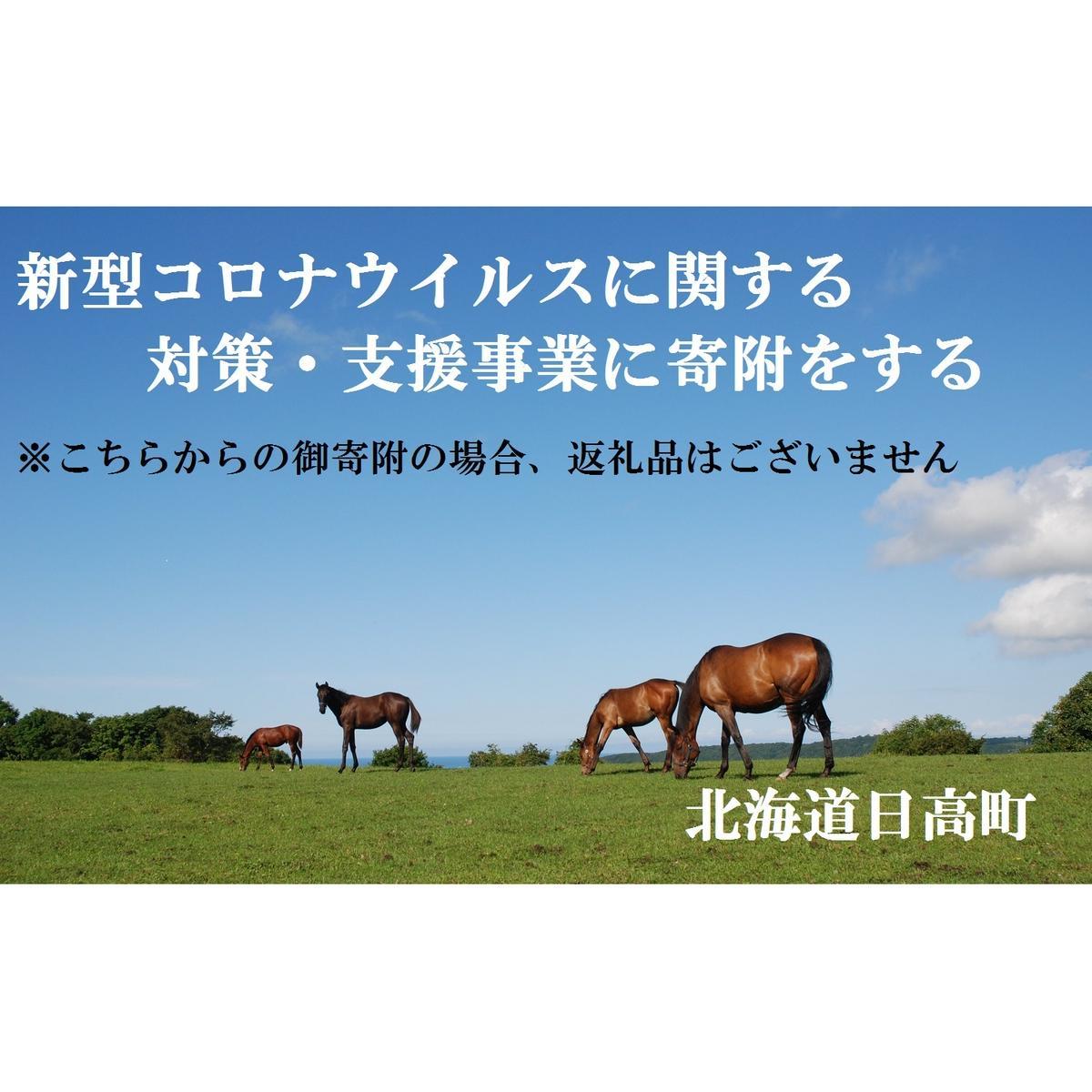 北海道日高町 ふるさと納税 受賞店 返礼品なし 自治体自治体にお任せ 新型コロナウイルスに関する対策 支援事業に寄付をする 全店販売中
