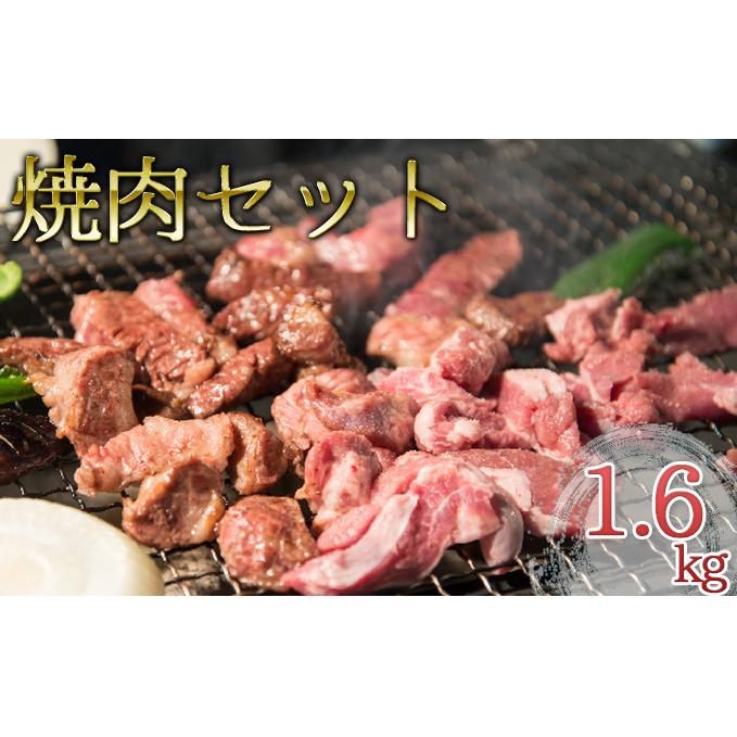 北海道日高町 感謝価格 ふるさと納税 肉の若松厳選 牛肉 豚肉 お肉 焼肉セット バーベキュー 鶏肉 舗 鶏肉の焼肉セット