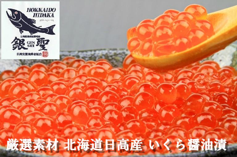 【ふるさと納税】前浜産 銀聖いくら醤油漬(500g×2箱)[B02-298]