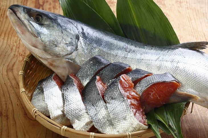 昔ながらの塩辛い熟成鮭切身パックのセットです ふるさと納税 浦河前浜産 特選 大 B02-262 山漬鮭 予約販売 無料 丸ごと切身2.2kg前後