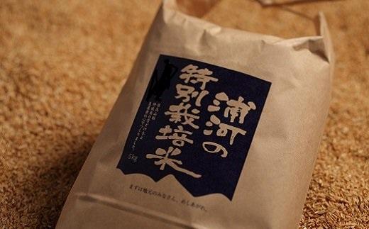 【ふるさと納税】浦河の特別栽培米「きたくりん」(5kg×2袋) [B28-552]