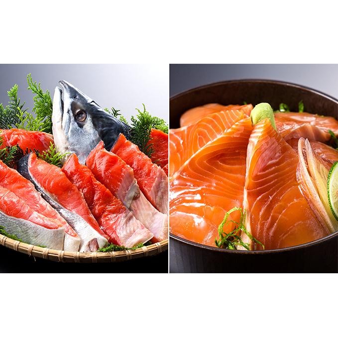 【北海道えりも町】 【ふるさと納税】えりも産時鮭姿切身とお刺身(天然塩付) 【魚貝類・鮭・サーモン・魚貝類・鮭・サーモン・お寿司】